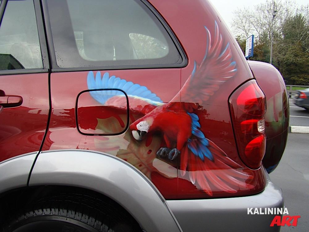 Рисунок попугаев на автомобиле