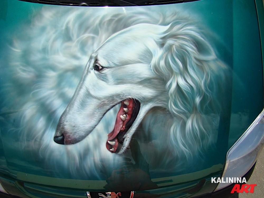 Рисунок собаки на капоте Peugeot